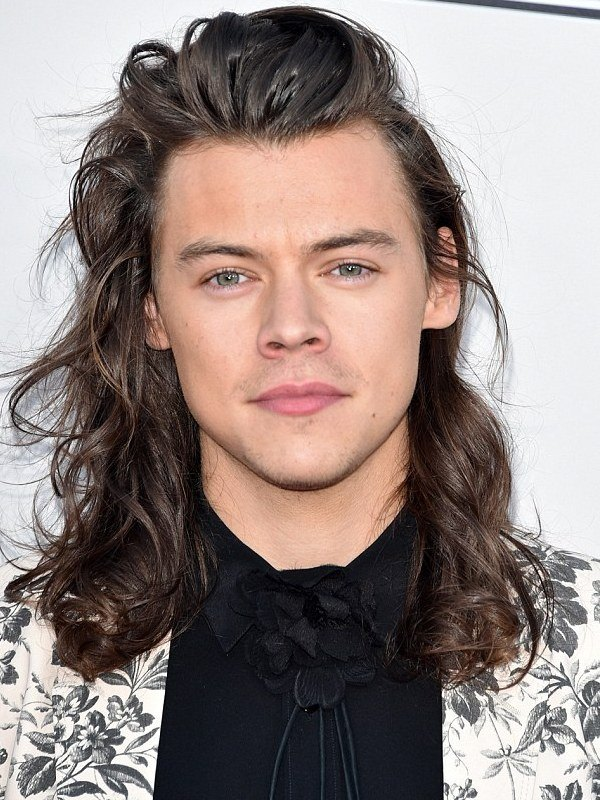 Compare Harry Styles Height Weight Eyes Hair Color With Other